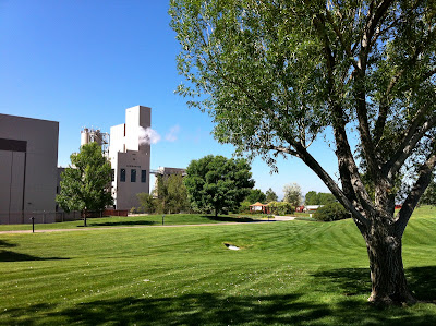Anheuser Busch Brewery Brewhouse, Fort Collins CO #Colorado #ColorfulColorado www.thebrighterwriter.blogspot.com