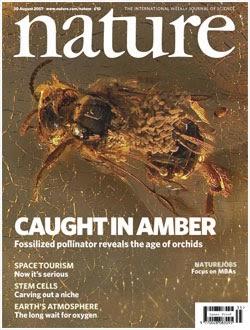 Revista Nature (Grã-bretanha)