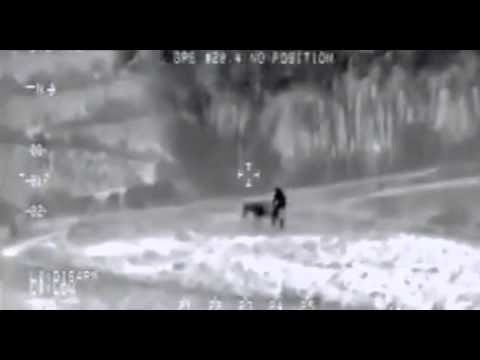 ISIS Terrorist Caught Having sex With A Donkey