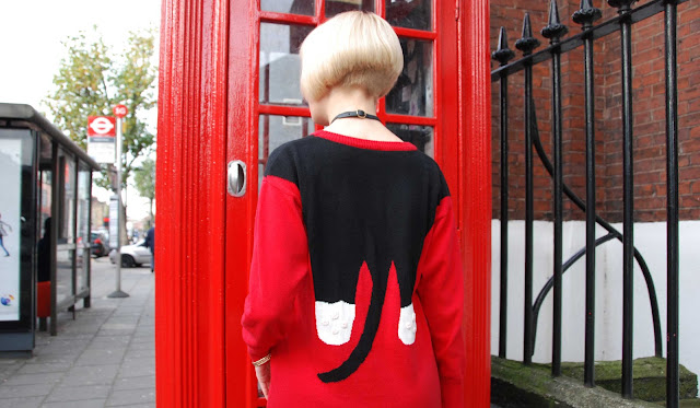 cat jumper, outfit, back, look