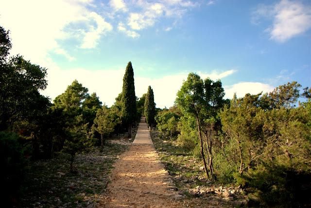 Парк на о-ве Локрум. Хорватия