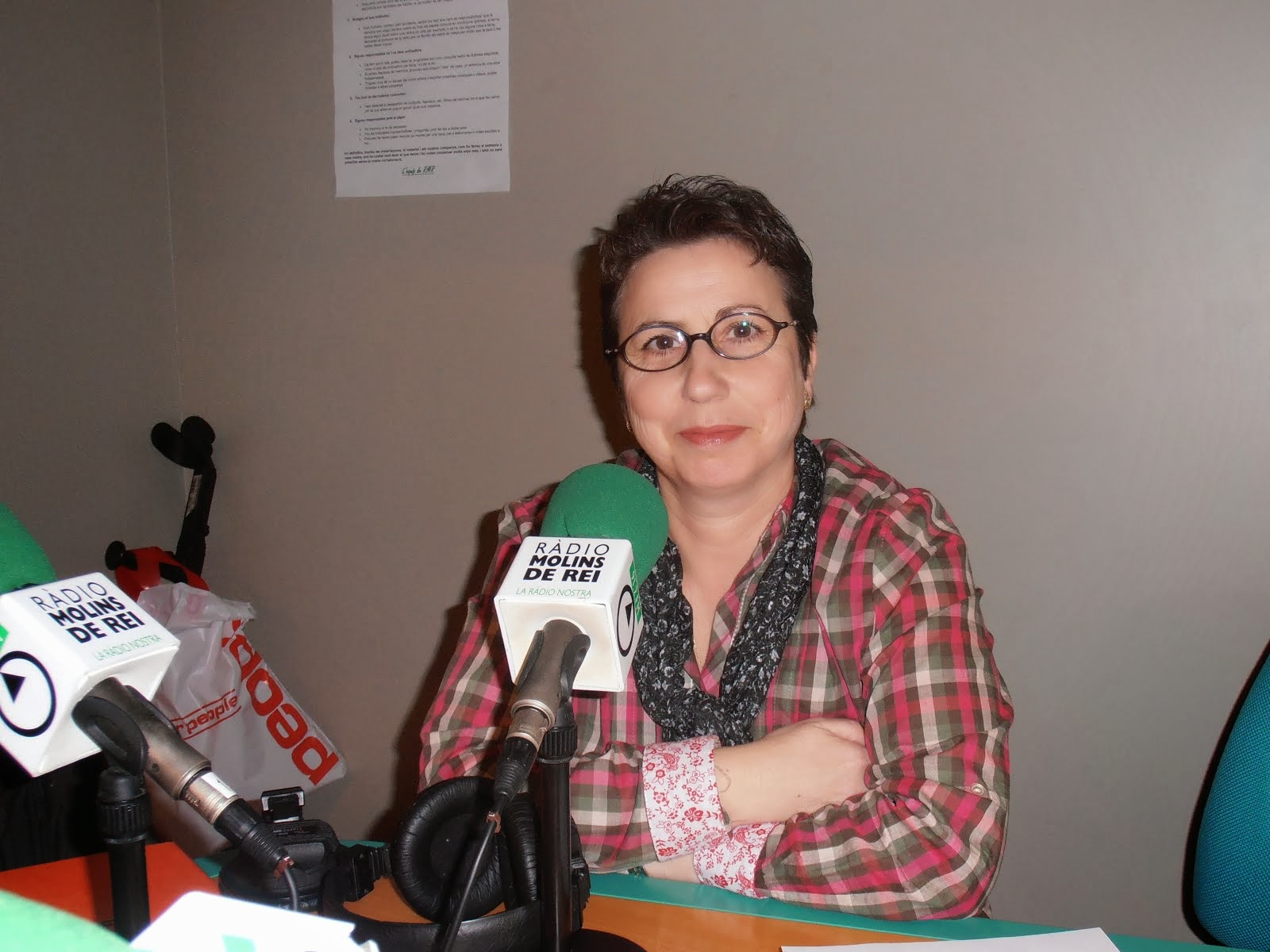 Radio Molins de  Rei