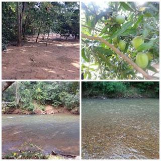 Chácara de 3 Mil Metros a 23 Km de Goiânia - beira rio - em Bela Vista de Goiás