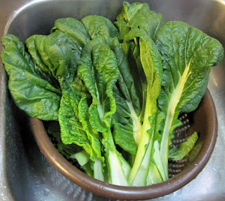 vitamin greens vitaminna