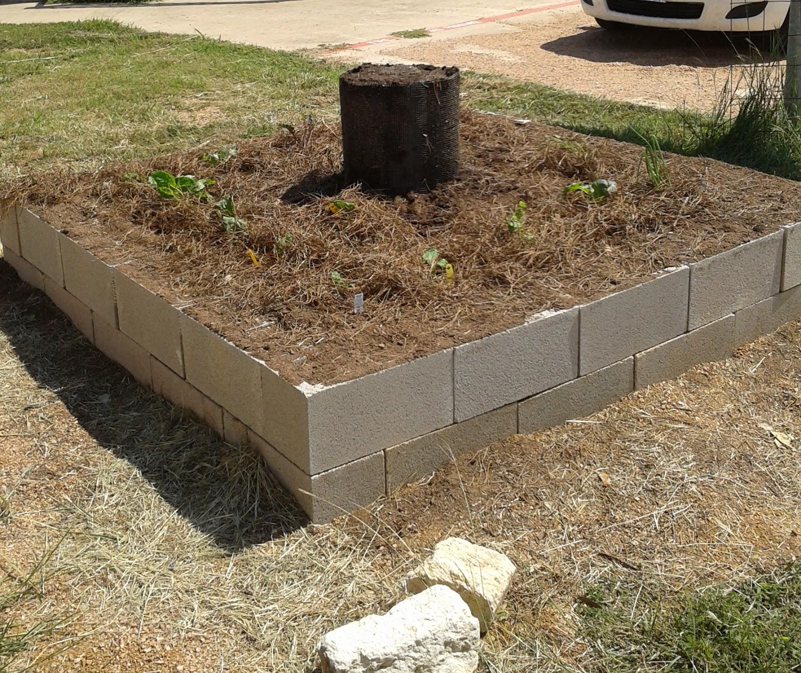 organicgreendoctor: square foot garden