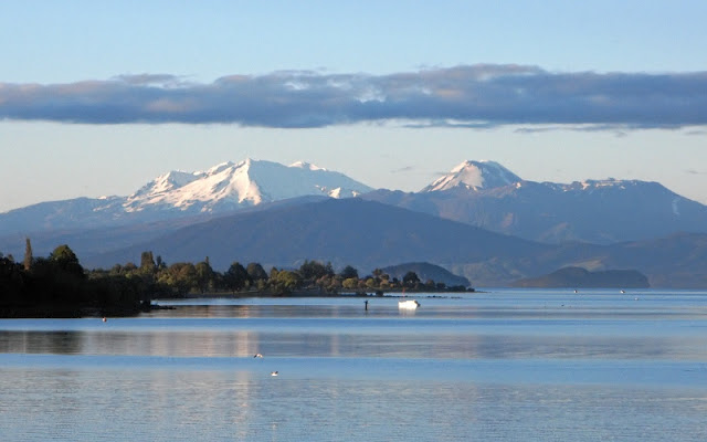 Taupo New Zealand  city pictures gallery : Lake Taupo | Rejser til New Zealand
