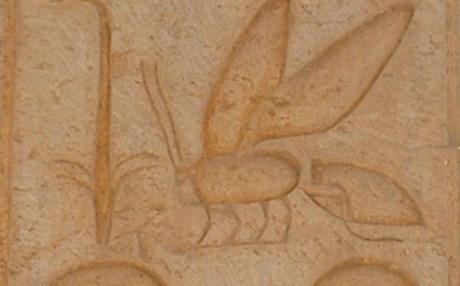 Η μελισσοκομία έχει προϊστορία τουλάχιστον 8.500 ετών
