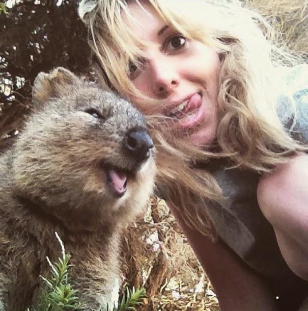 quokka selfie trend australia-4