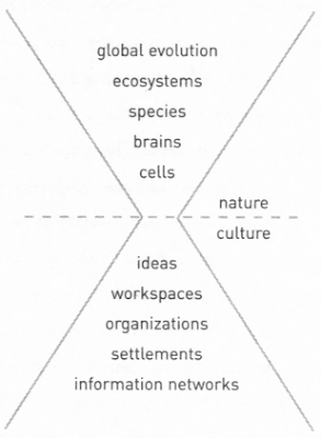 "top of hourglass: ""global evolution"" / ecosystems / species / brains /cells (nature), division line, bottom of hourglass: (culture) ideas workspaces organizations settlements ""information networks"""