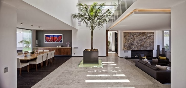Palm tree in Contemporary Casa Río Hondo in Mexico City