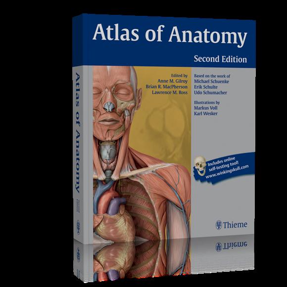 Thieme atlas of anatomy free download