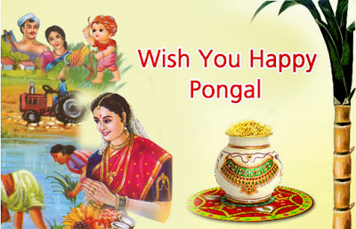 Latest Pongal 2016 SMS Facebook Status Wishes Collection