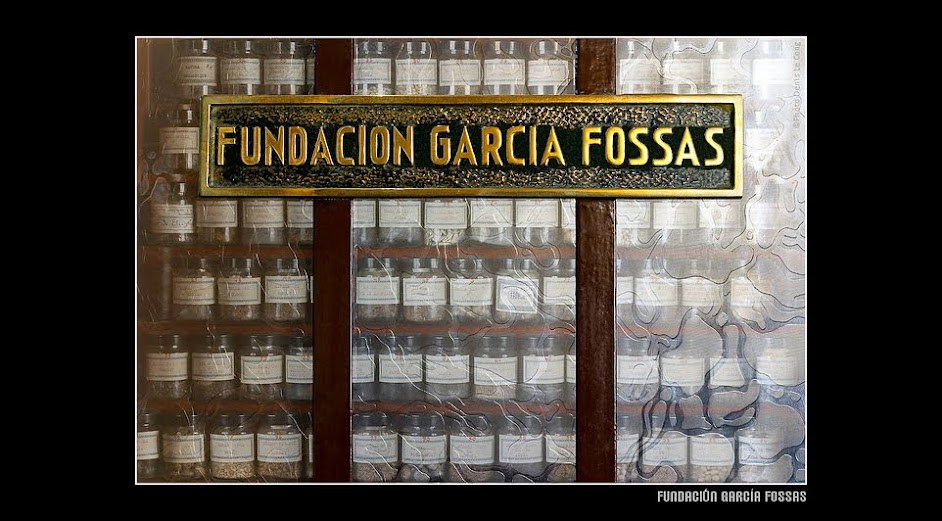 Fundació Garcia Fossas