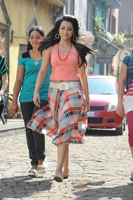 trisha new in dammu movie photo gallery