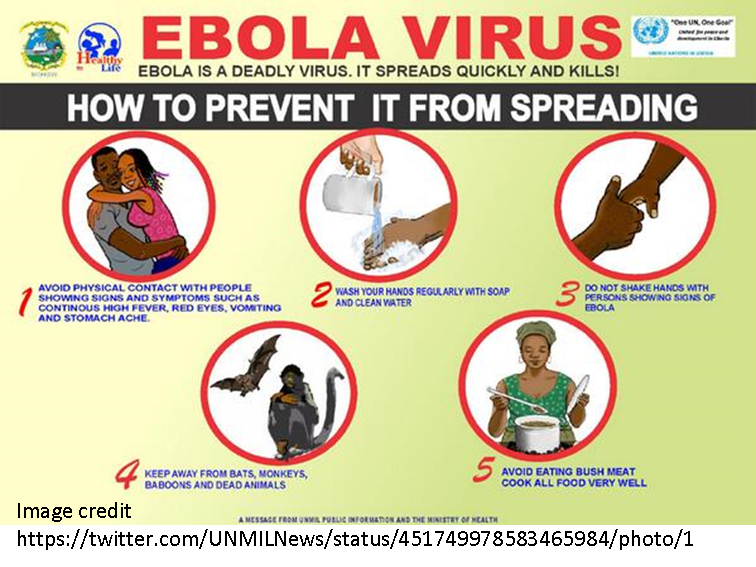 the problem of the ebola virus Ebola virus disease is a serious illness that  as this will help identify what the problem could  how ebola virus is spread the ebola virus is spread in.