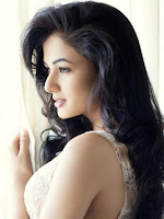 Sonal Chauhan New Hot Photoshoot