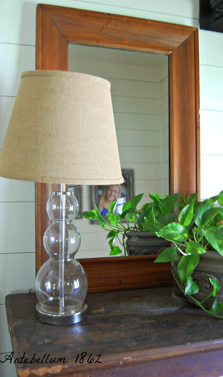 How To Decorate Home With Plants