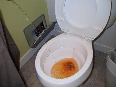 Causes de sang dans l'urine - Articles à propos de la santé