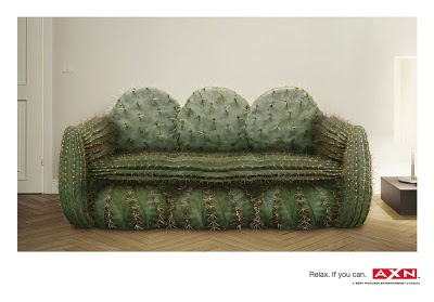 smiješne slike Kauč od kaktusa