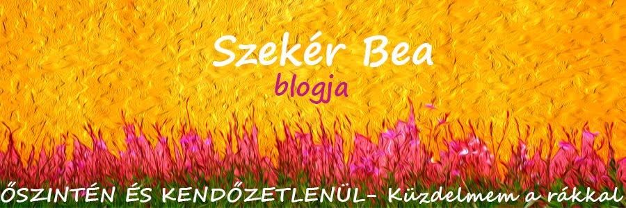 Szekér Bea