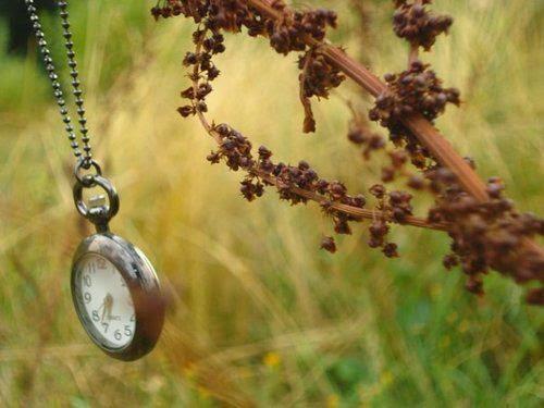 Tempo, um dia
