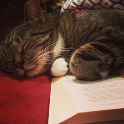 Literary Kat