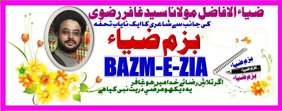 Bazm-E-Zia. بزم ضیاء