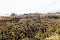 Tanah luas di Cibiru Bandung dijual Info Griya