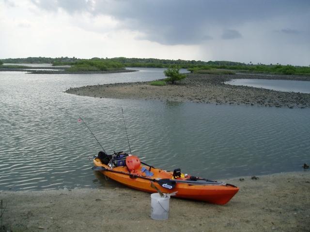 Kayak angling for big fish fishing report pellicer 5 27 11 for Kayak fish stringer