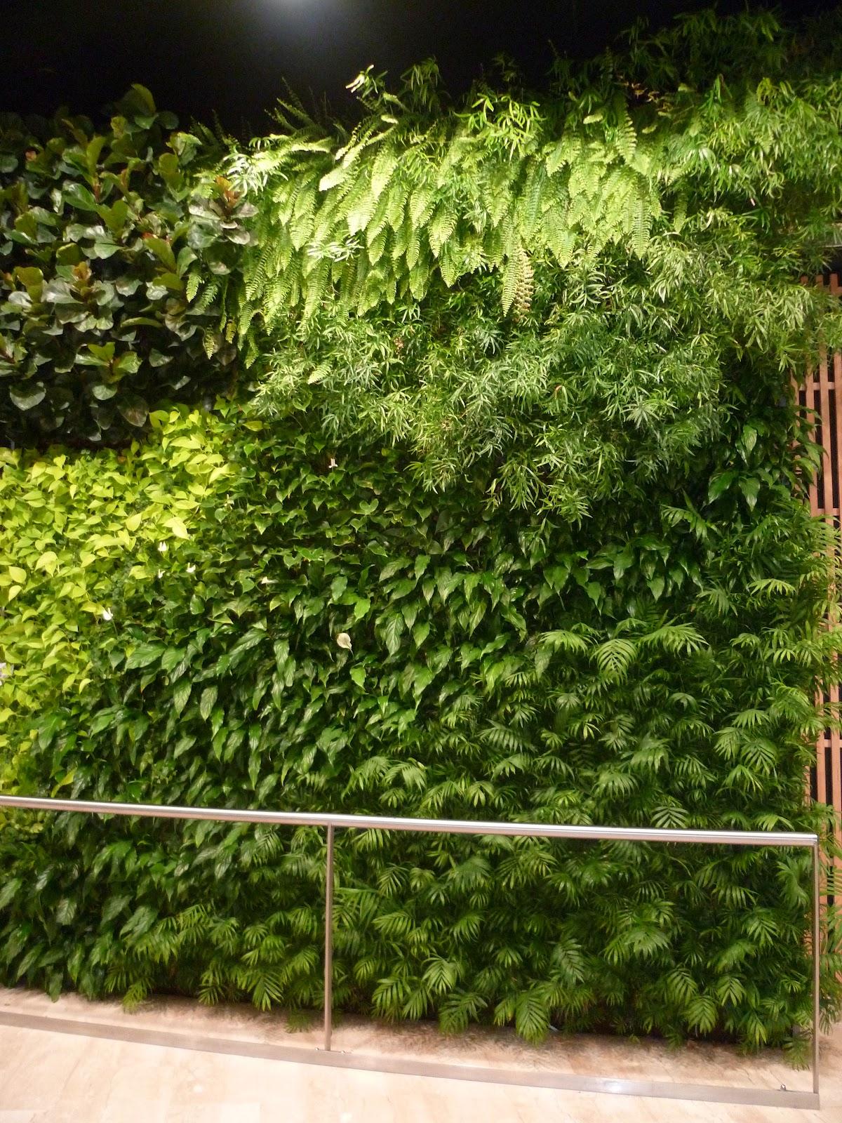 fleuriste isabelle feuvrier le mur v g tal du grand quartier de saint gr goire 35. Black Bedroom Furniture Sets. Home Design Ideas