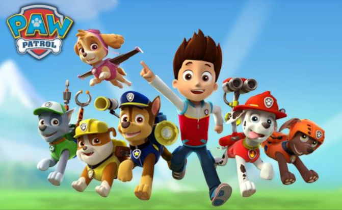 Rubble from paw patrol car pictures