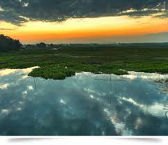 the riverine island
