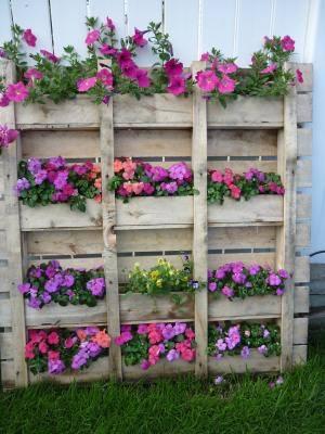 Belos jardins fa a voc mesmo princesa for Jardin vertical barato