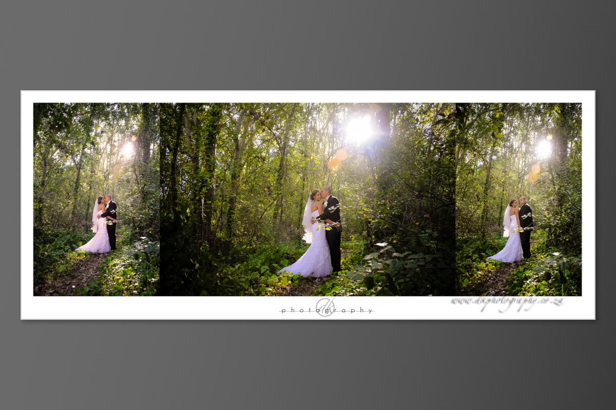 DK Photography DVD+slideshow-377 Cleo & Heinrich's Wedding in D'Aria, Durbanville  Cape Town Wedding photographer