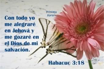 imágenes de flores con pasajes bíblicas
