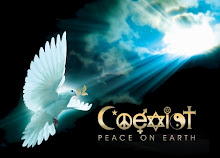 graphic for Diane's blog COEXIST