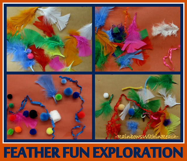 photo of: Feather Fun Exploration for Thanksgiving via RainbowsWithinReach