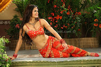 Meenakshi, dixit, latest, hot, navel, cleavage, pics