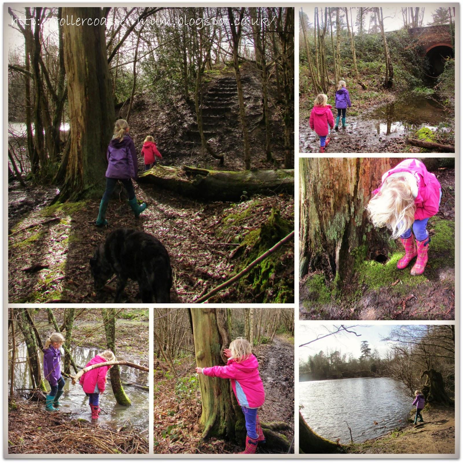 woodland adventures, Woodland Trust
