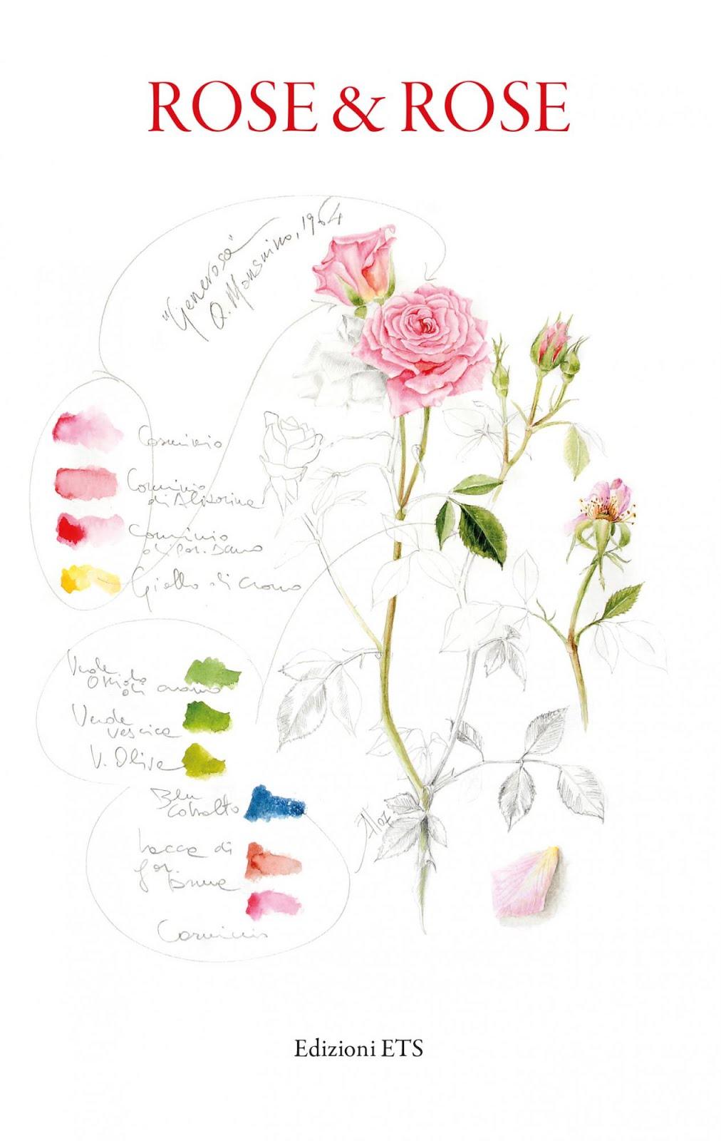 Rose, rose e ancora rose