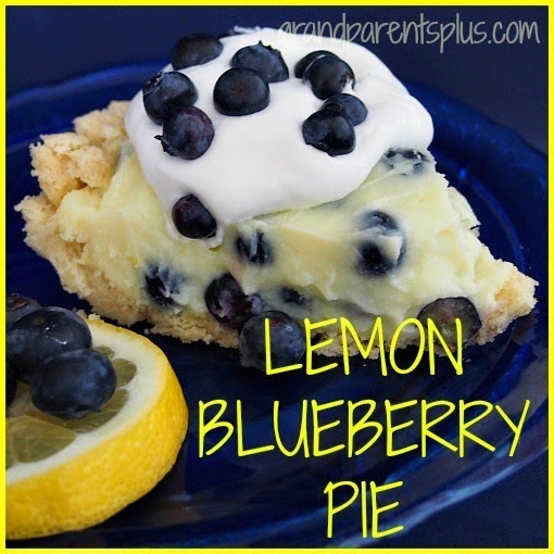15 Blueberry Recipes on Diane's Vintage Zest!