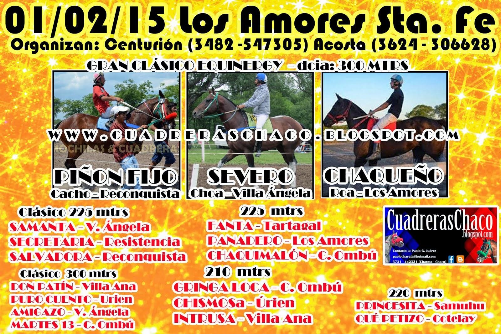 LOS AMORES 1-2-15