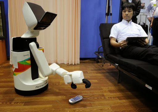Human Support Robot