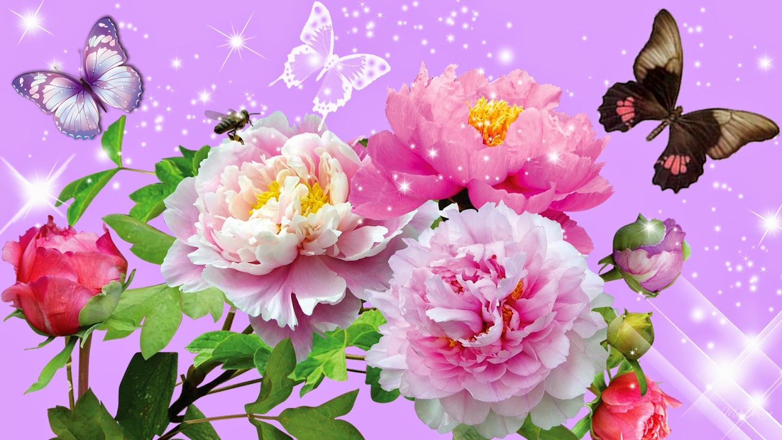 Flower Wallpaper XNT