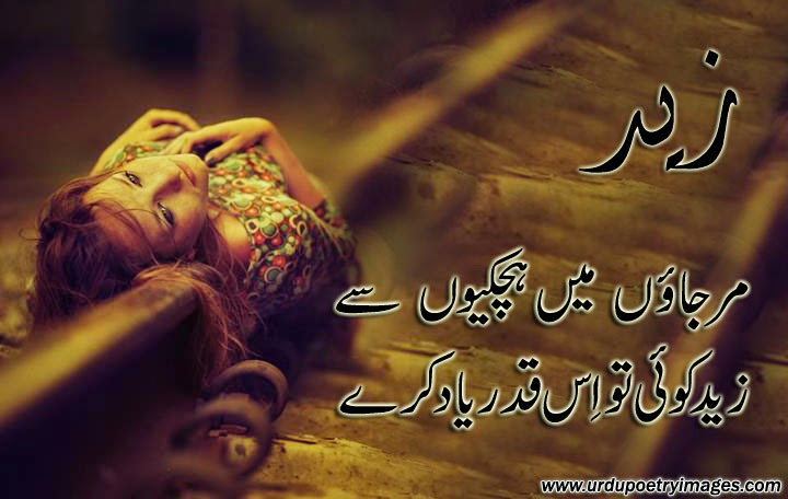 latest urdu poetry
