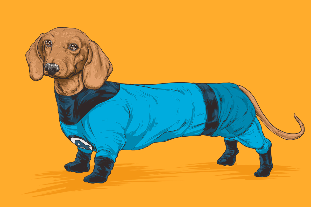 01-Fantastic-Four-Mr-Fantastic-Josh-Lynch-Illustrations-of-Dogs-with-Marvel-Comic-Alter-Egos-www-designstack-co