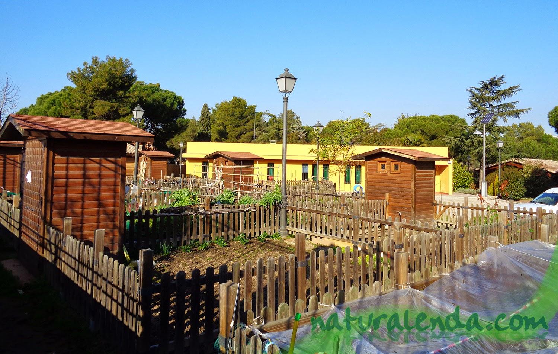La naturaleza en casa huertos urbanos en m stoles for Casetas de huerto