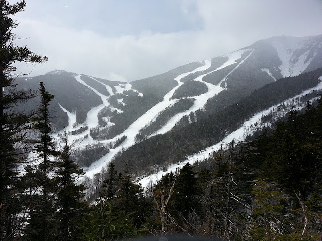 View of Whiteface Mountain ski trails