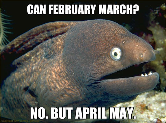 Bad Joke Eel - Can February March