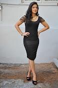 Nikesha patel latest glam pics-thumbnail-1
